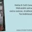 Helia-D Cell Concept hidratáló szérum